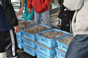 日間賀島市場
